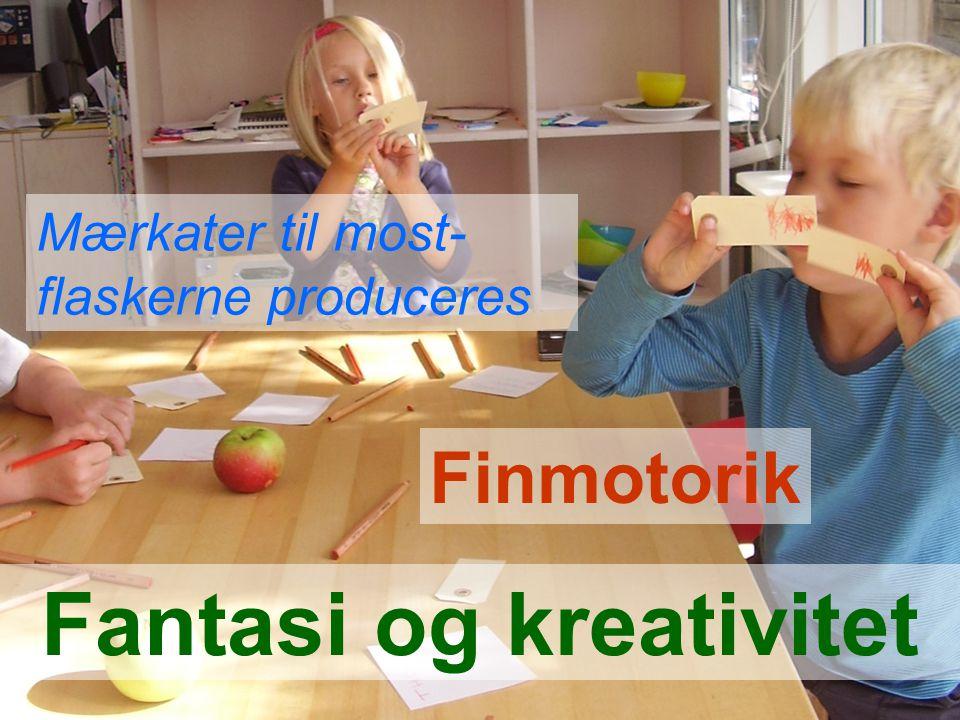 Fantasi og kreativitet