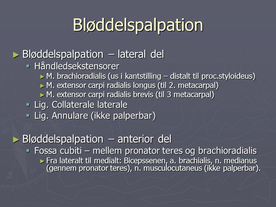 Bløddelspalpation Bløddelspalpation – lateral del
