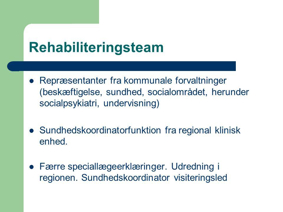 Rehabiliteringsteam Repræsentanter fra kommunale forvaltninger (beskæftigelse, sundhed, socialområdet, herunder socialpsykiatri, undervisning)