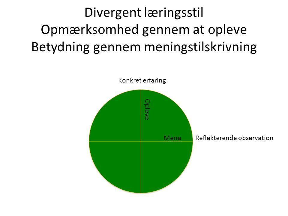 Divergent læringsstil Opmærksomhed gennem at opleve Betydning gennem meningstilskrivning