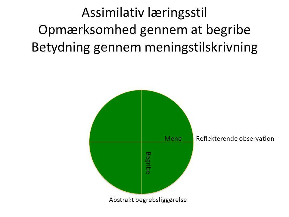 Assimilativ læringsstil Opmærksomhed gennem at begribe Betydning gennem meningstilskrivning