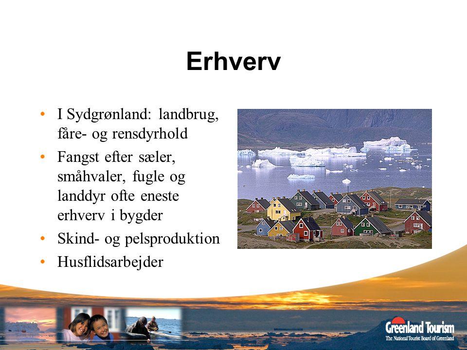 Erhverv I Sydgrønland: landbrug, fåre- og rensdyrhold