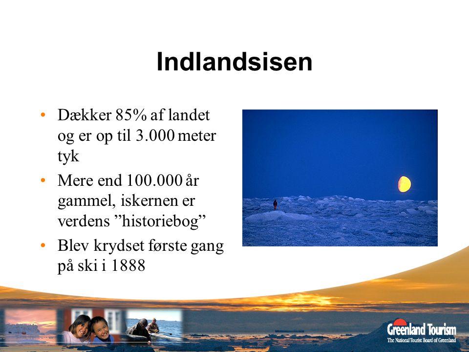 Indlandsisen Dækker 85% af landet og er op til 3.000 meter tyk