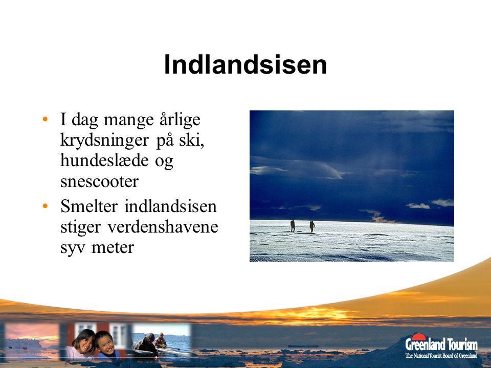 Indlandsisen I dag mange årlige krydsninger på ski, hundeslæde og snescooter.