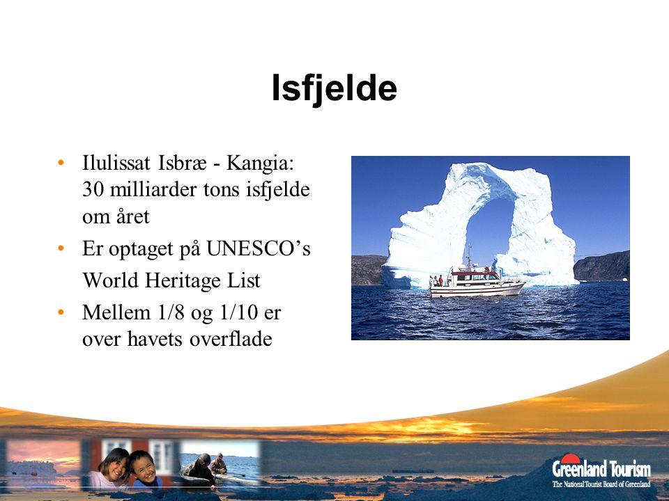 Isfjelde Ilulissat Isbræ - Kangia: 30 milliarder tons isfjelde om året