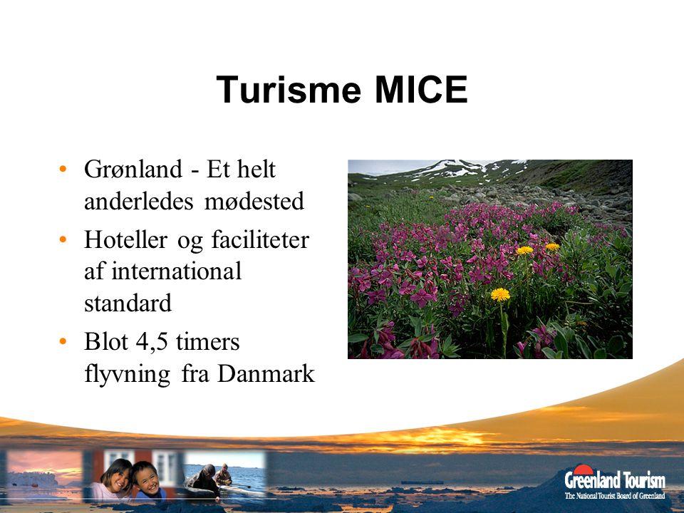 Turisme MICE Grønland - Et helt anderledes mødested