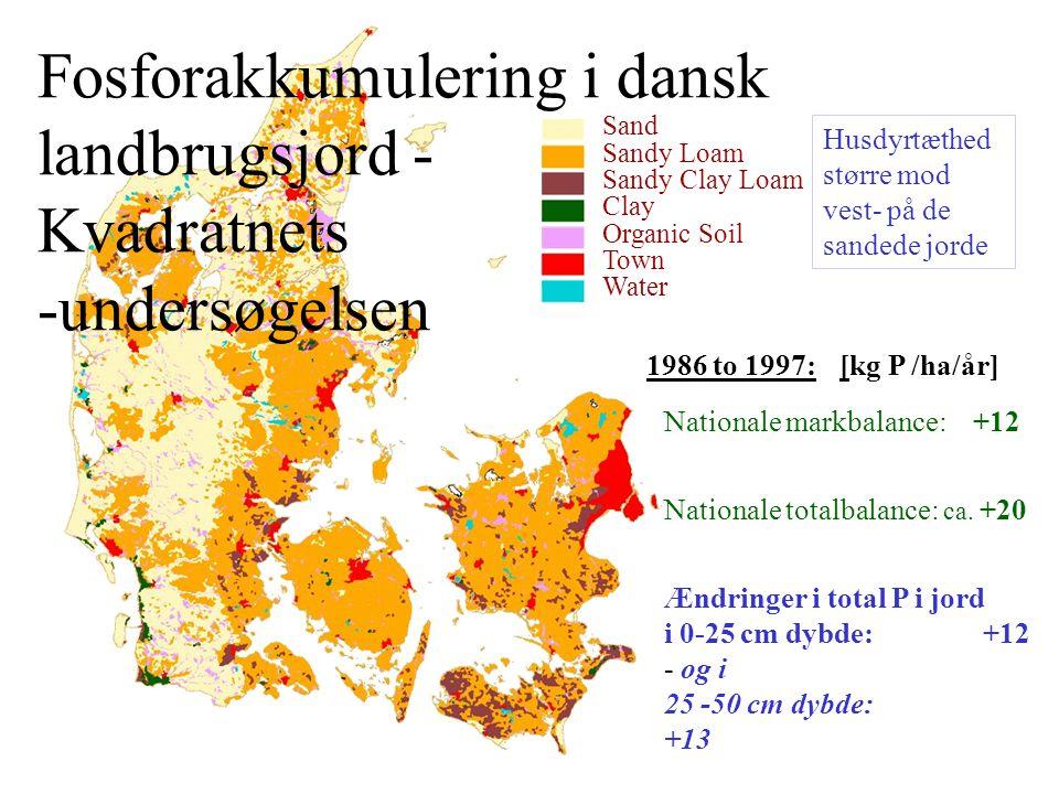 Fosforakkumulering i dansk landbrugsjord - Kvadratnets -undersøgelsen