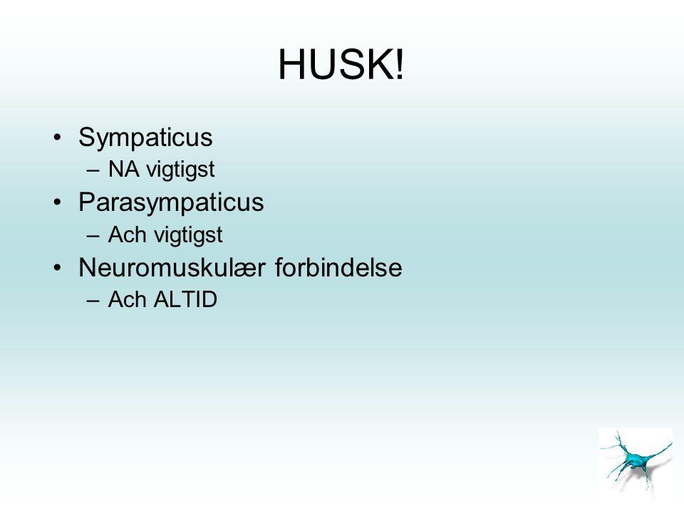 HUSK! Sympaticus Parasympaticus Neuromuskulær forbindelse NA vigtigst