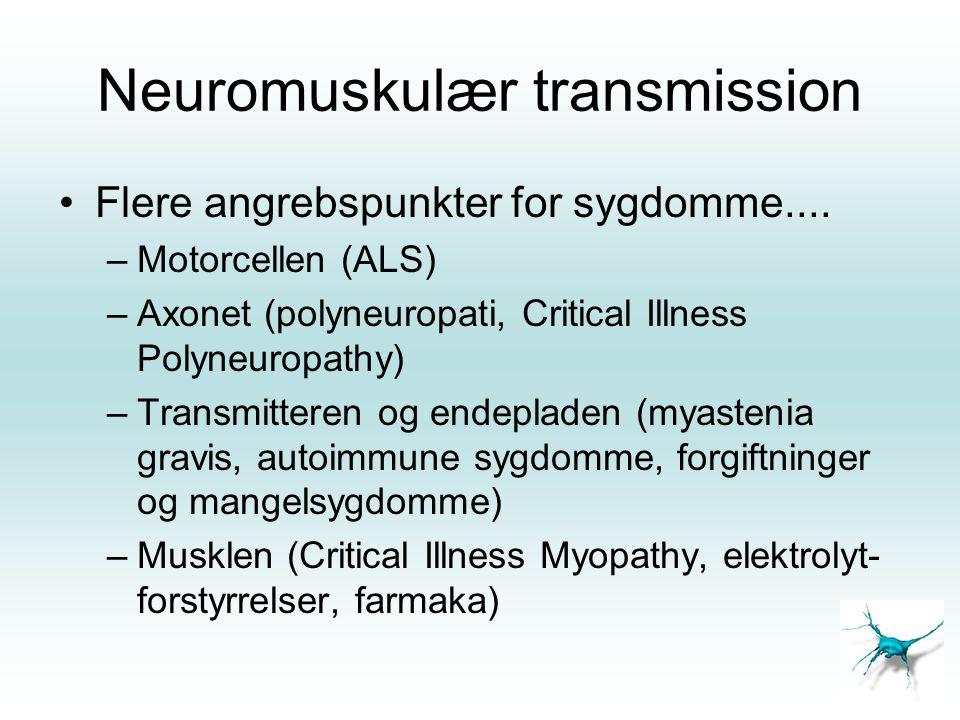 Neuromuskulær transmission