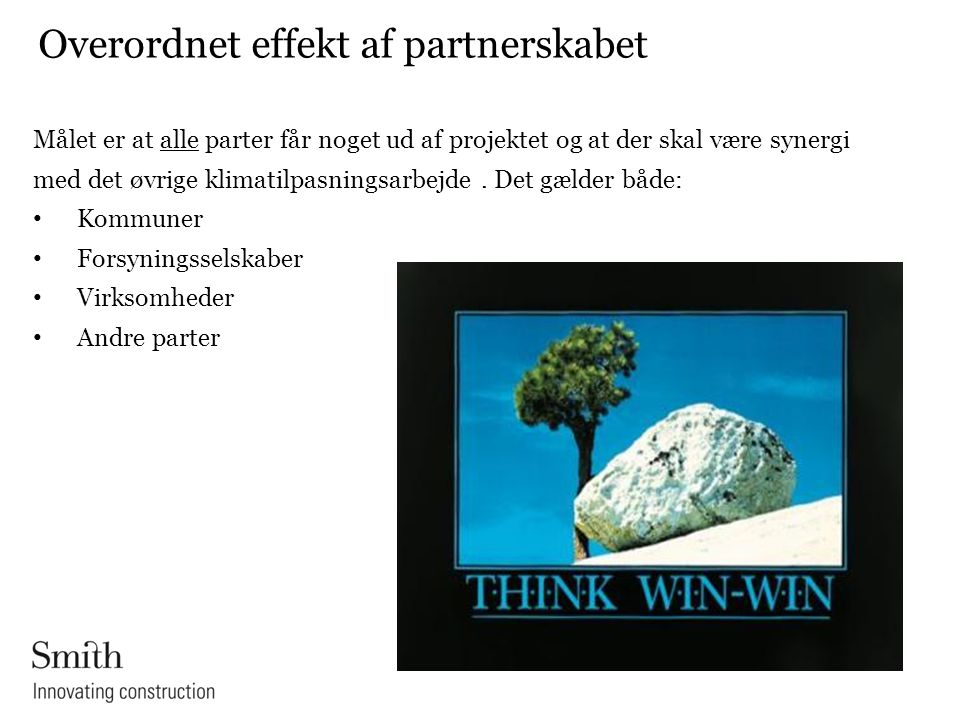 Overordnet effekt af partnerskabet