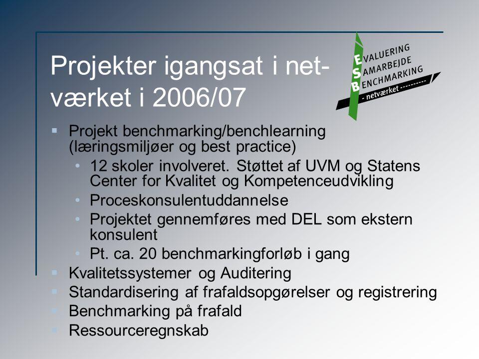Projekter igangsat i net- værket i 2006/07