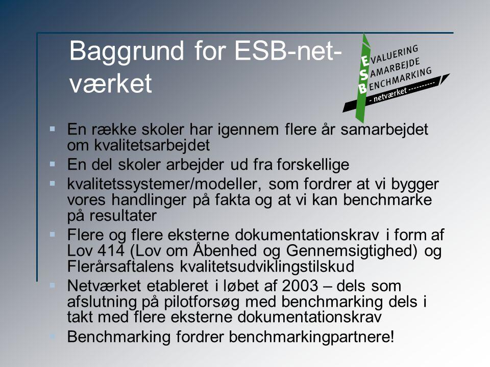 Baggrund for ESB-net- værket