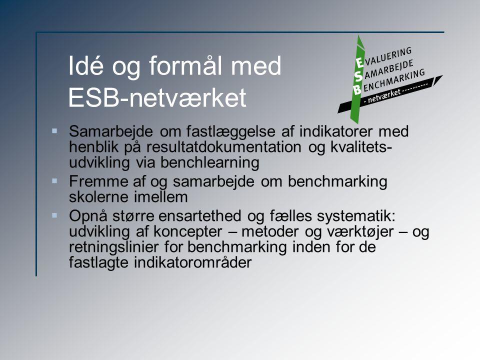 Idé og formål med ESB-netværket