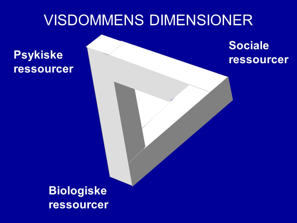 VISDOMMENS DIMENSIONER