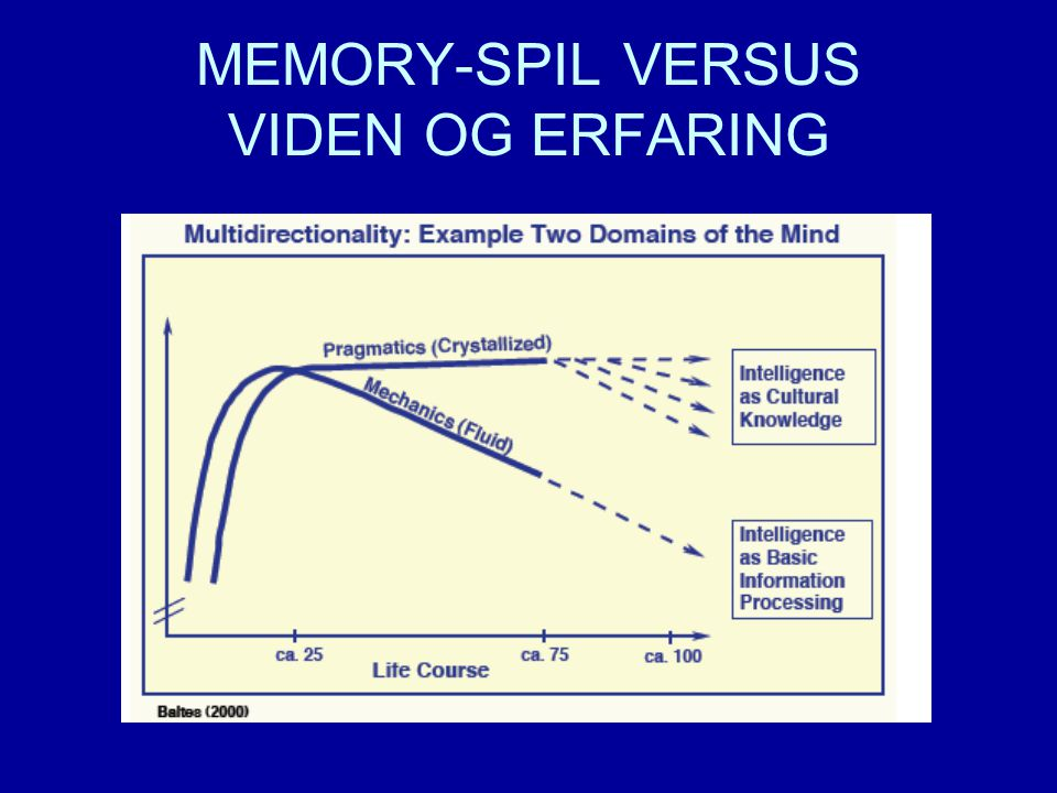 MEMORY-SPIL VERSUS VIDEN OG ERFARING
