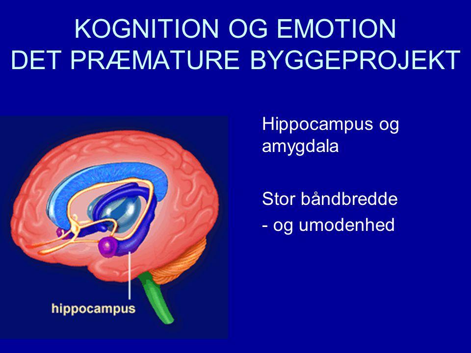 KOGNITION OG EMOTION DET PRÆMATURE BYGGEPROJEKT