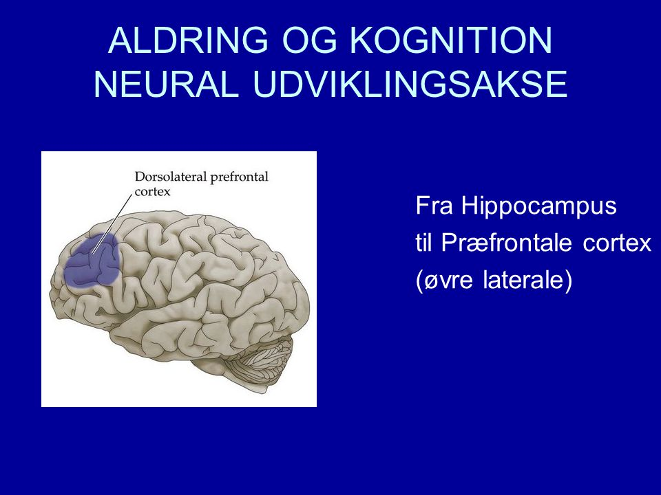 ALDRING OG KOGNITION NEURAL UDVIKLINGSAKSE