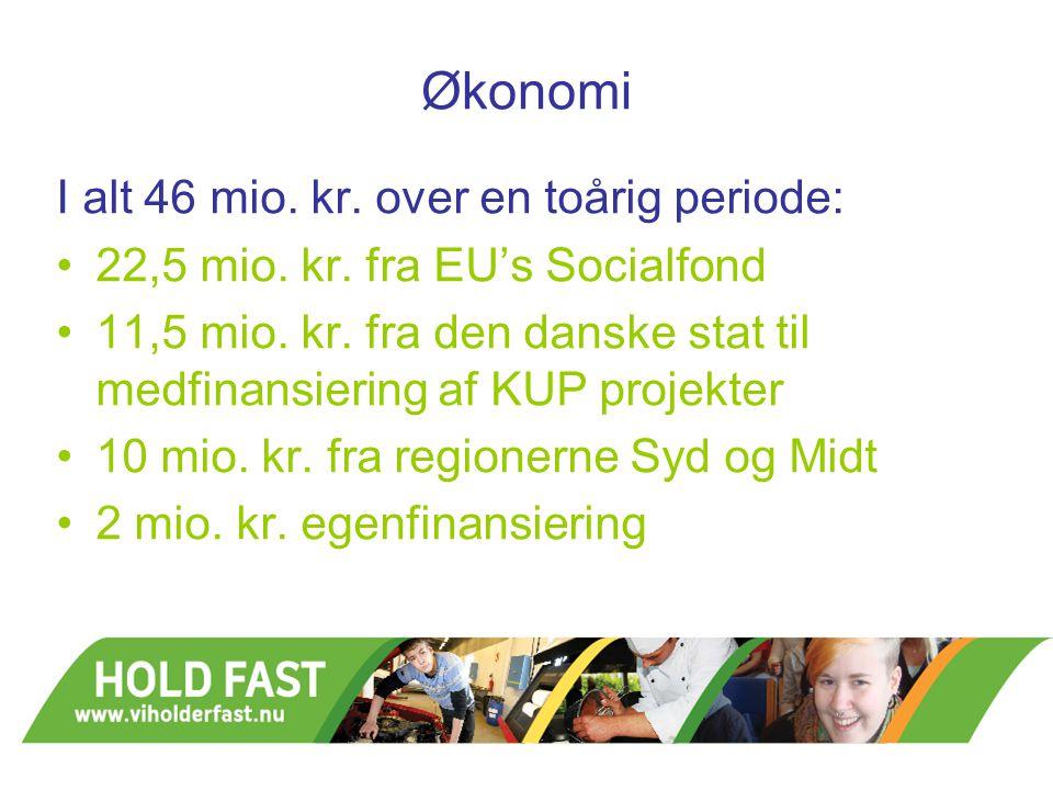 Økonomi I alt 46 mio. kr. over en toårig periode: