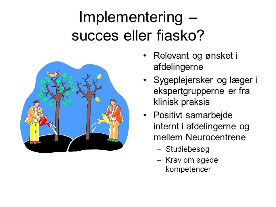 Implementering – succes eller fiasko