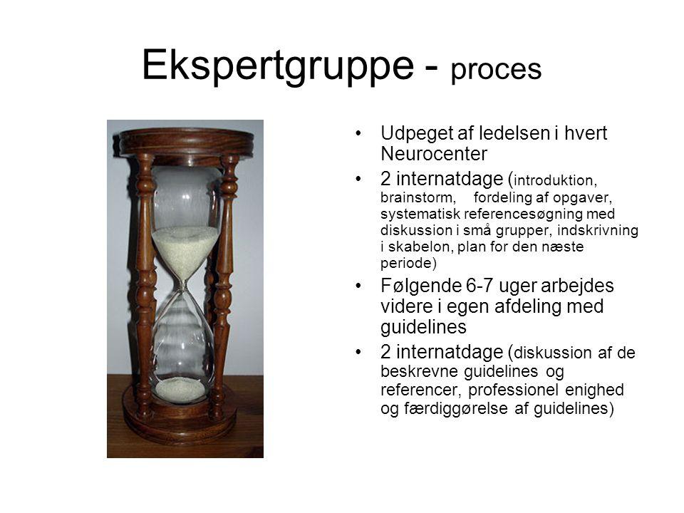 Ekspertgruppe - proces