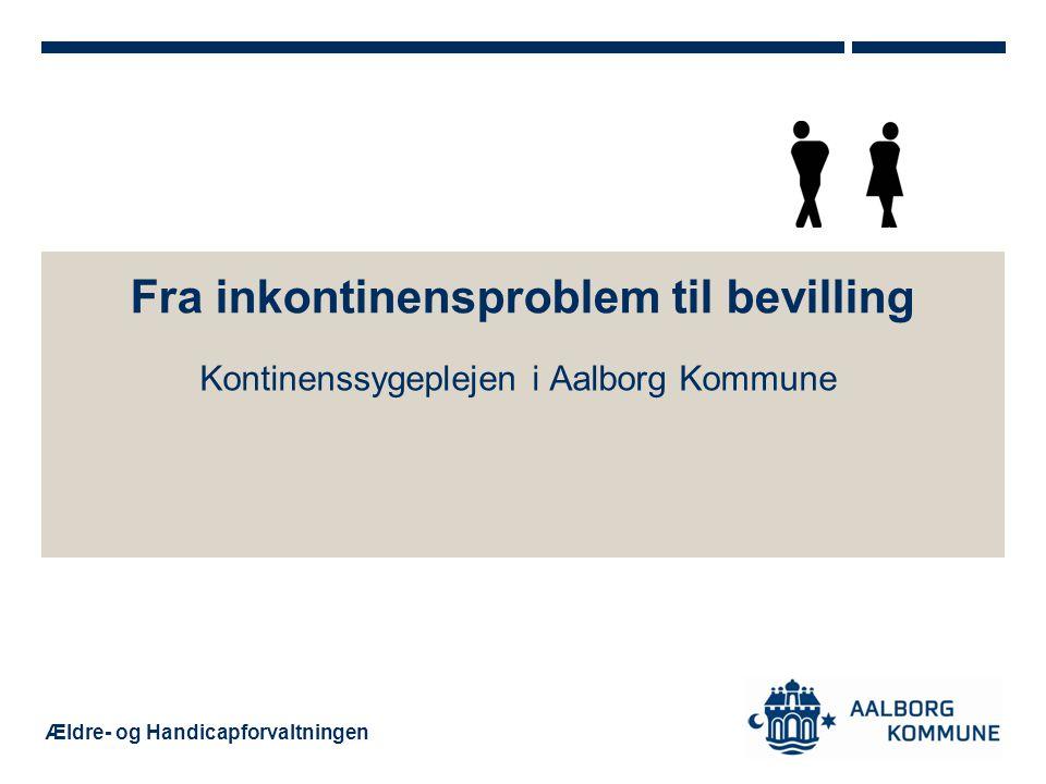 Fra inkontinensproblem til bevilling