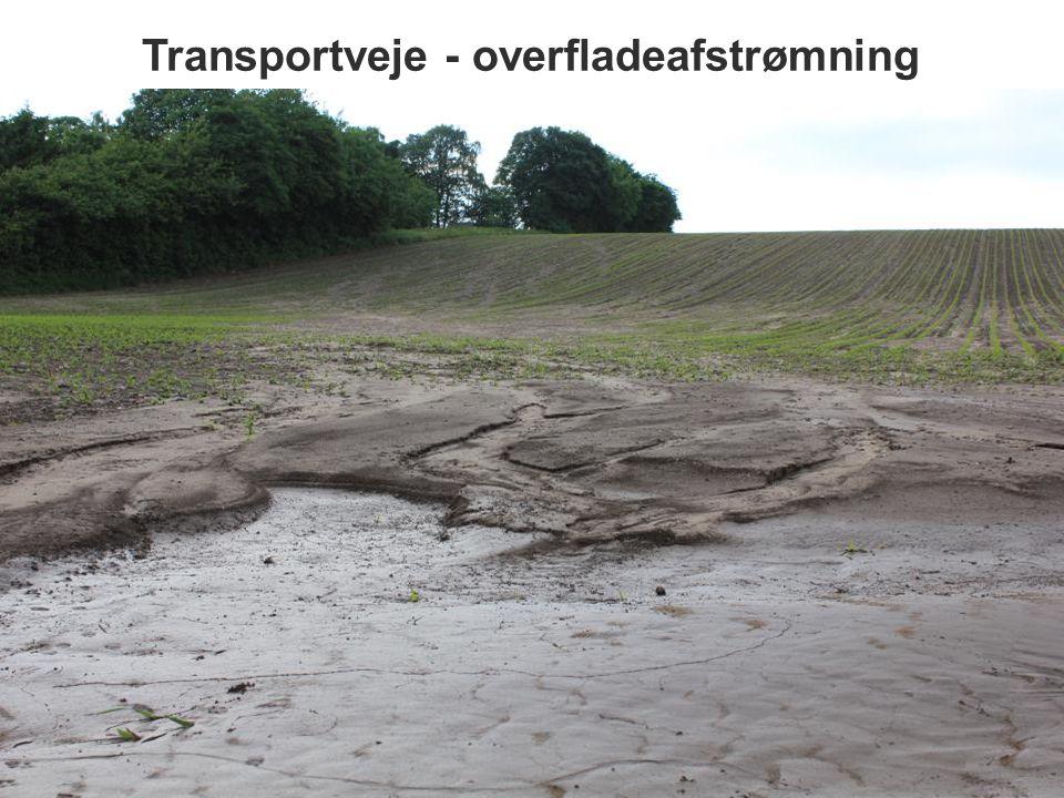 Transportveje - overfladeafstrømning