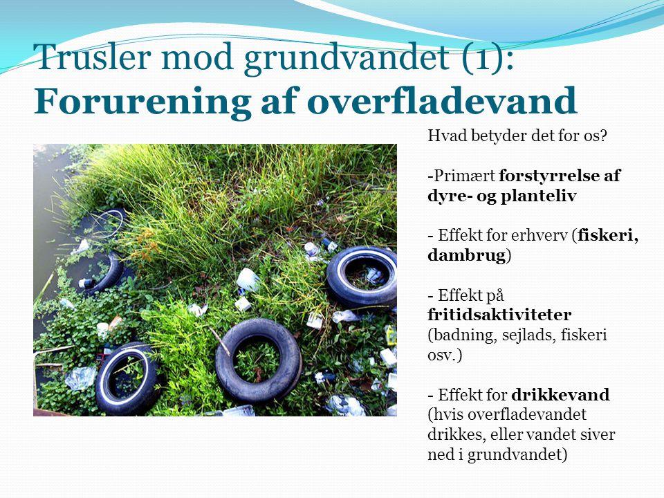 Trusler mod grundvandet (1): Forurening af overfladevand