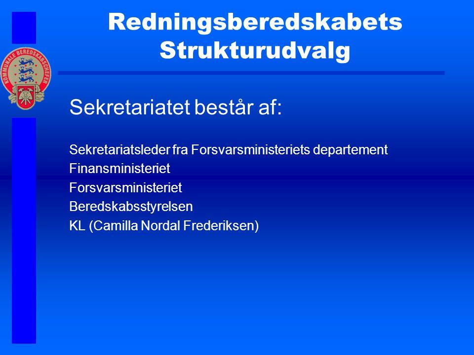 Redningsberedskabets Strukturudvalg