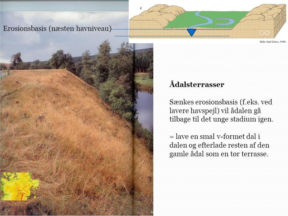 Erosionsbasis (næsten havniveau)