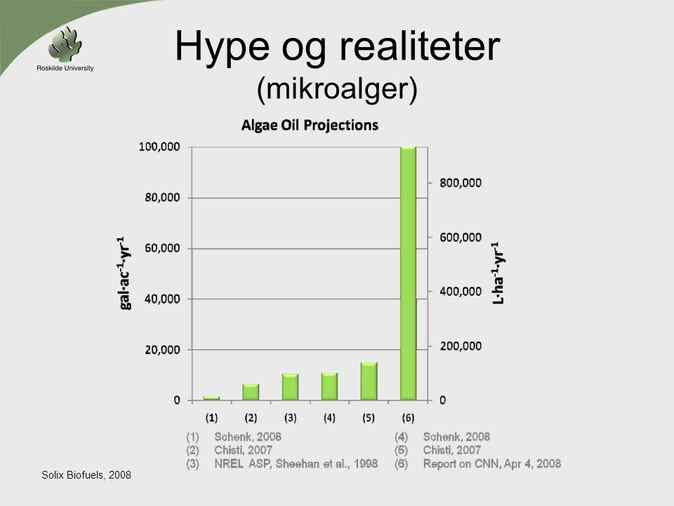 Hype og realiteter (mikroalger)