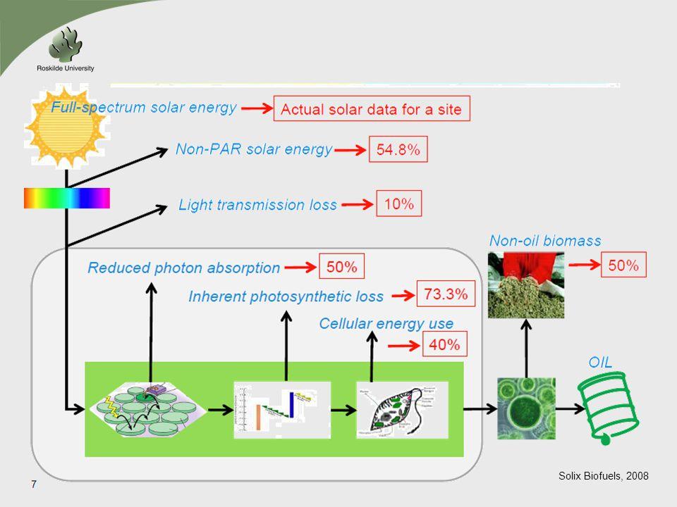 Solix Biofuels, 2008
