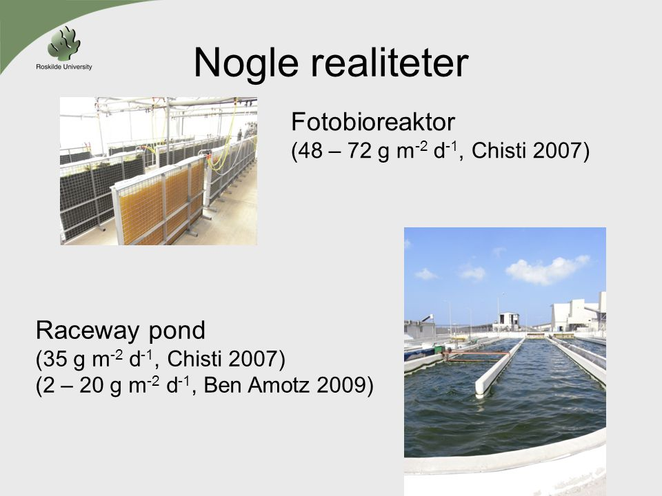 Nogle realiteter Fotobioreaktor Raceway pond