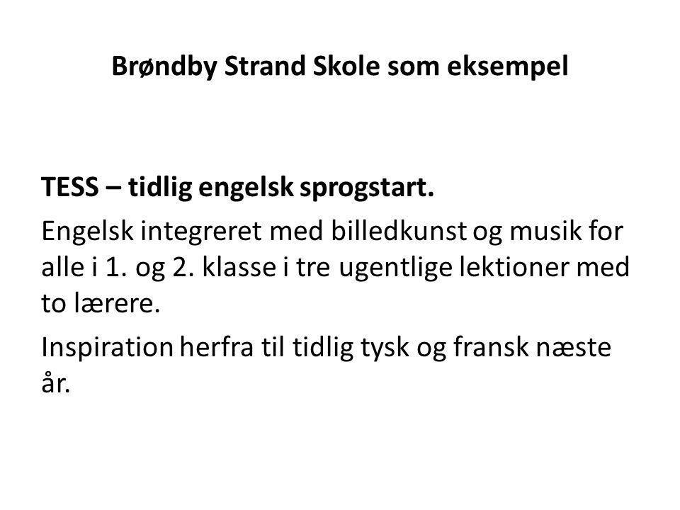 Brøndby Strand Skole som eksempel