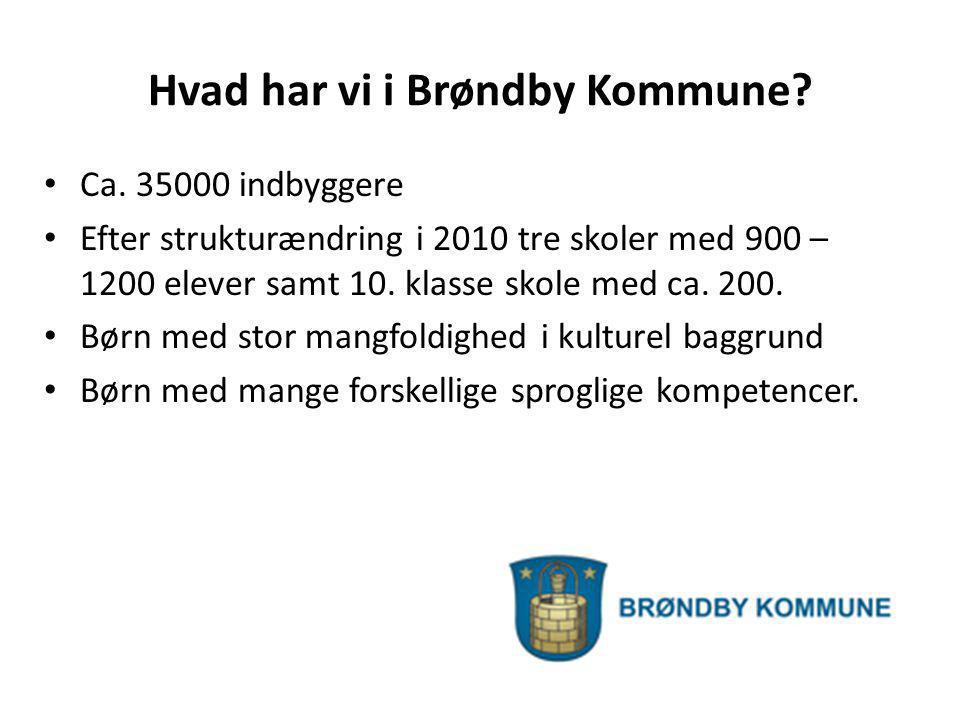 Hvad har vi i Brøndby Kommune
