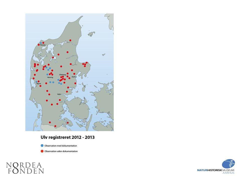 Nogle af befolkningens indrapporteringer til Naturhistorisk Museum, Aarhus.