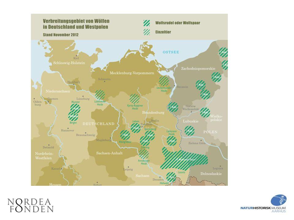 Ulves udbredelse i Tyskland og det vestlige Polen