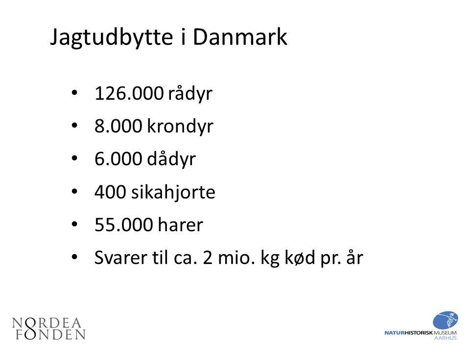Jagtudbytte i Danmark 126.000 rådyr 8.000 krondyr 6.000 dådyr