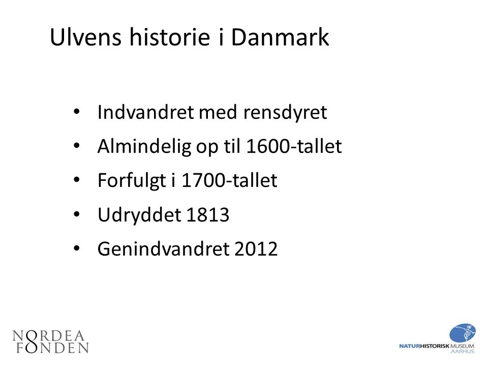 Ulvens historie i Danmark