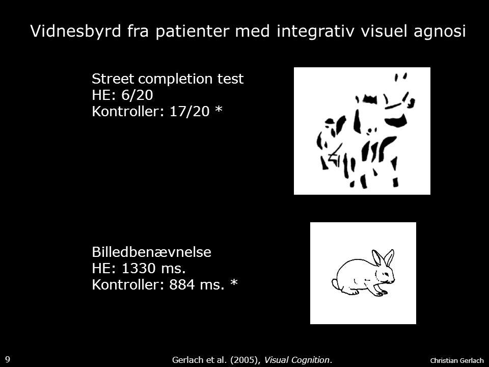Vidnesbyrd fra patienter med integrativ visuel agnosi