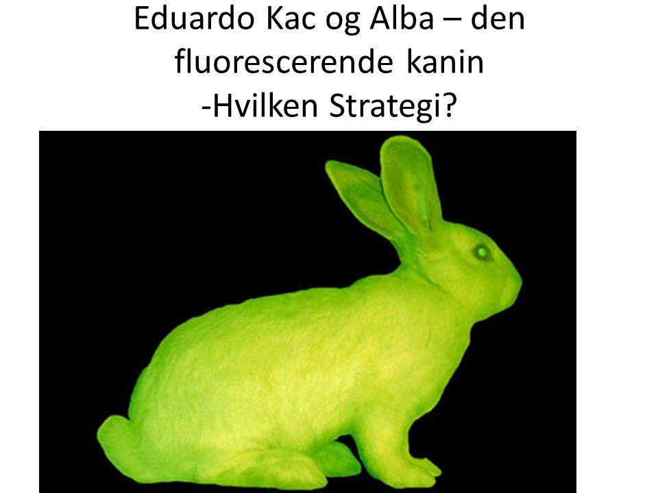 Eduardo Kac og Alba – den fluorescerende kanin -Hvilken Strategi