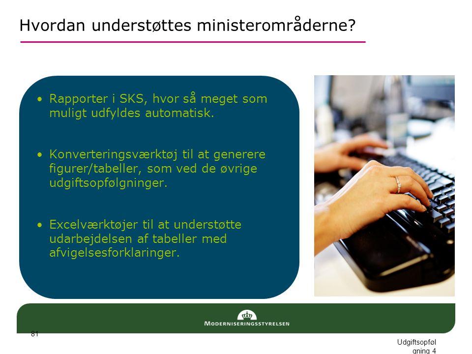 Hvordan understøttes ministerområderne