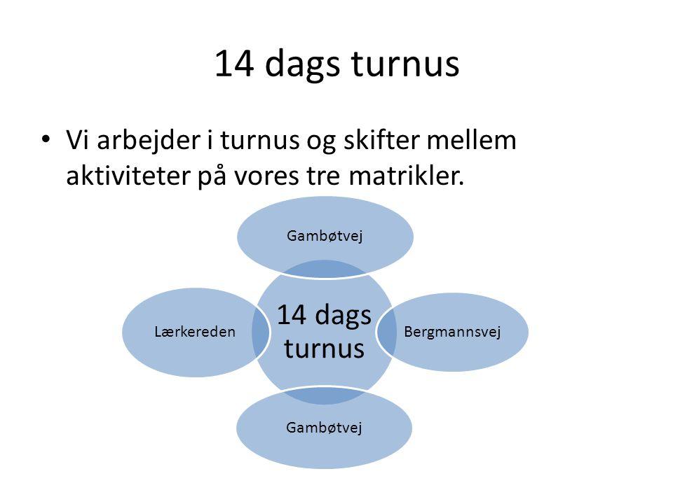 14 dags turnus 14 dags turnus