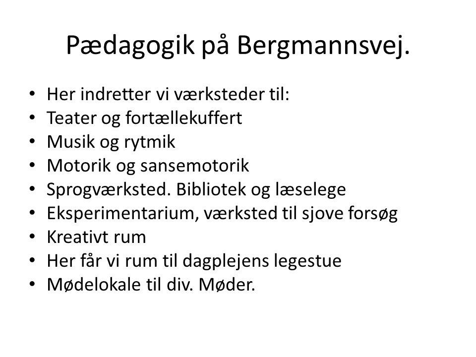Pædagogik på Bergmannsvej.