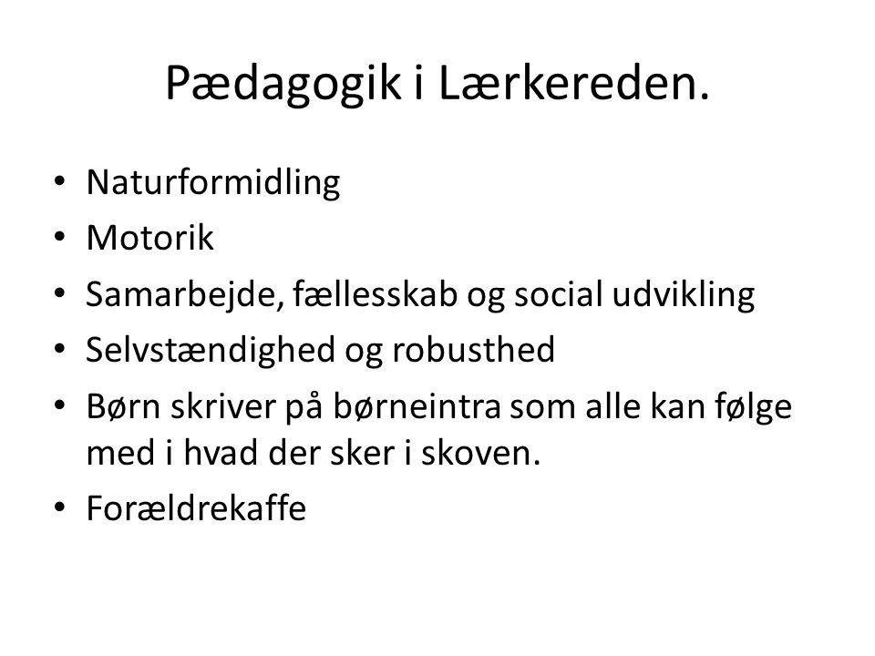 Pædagogik i Lærkereden.