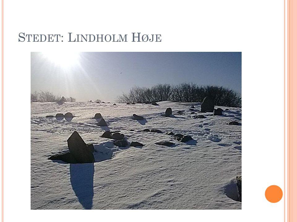 Stedet: Lindholm Høje