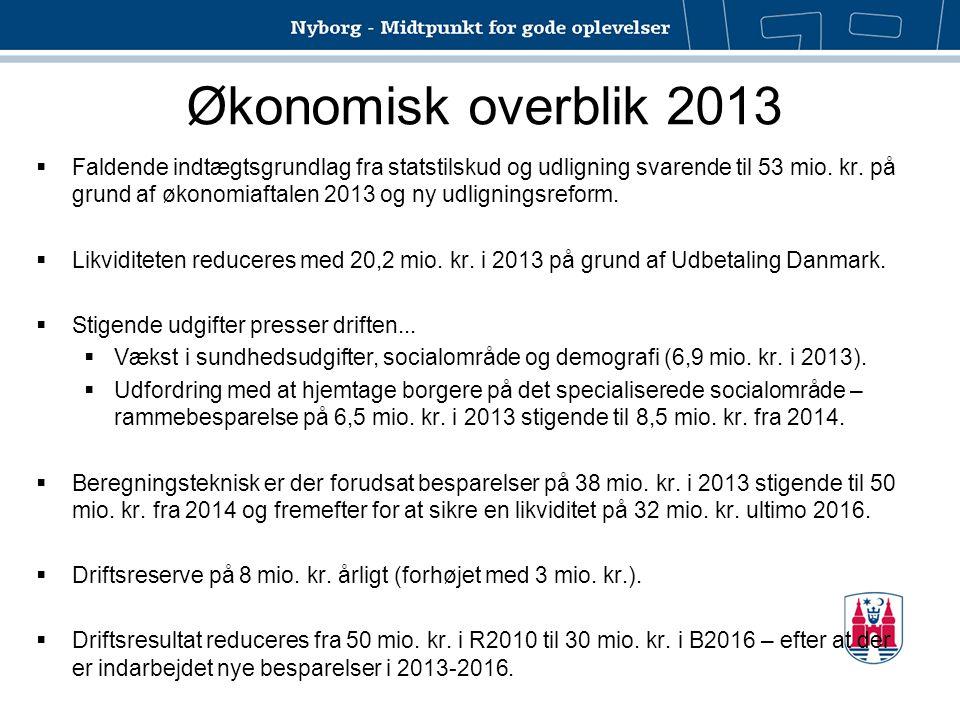 Økonomisk overblik 2013
