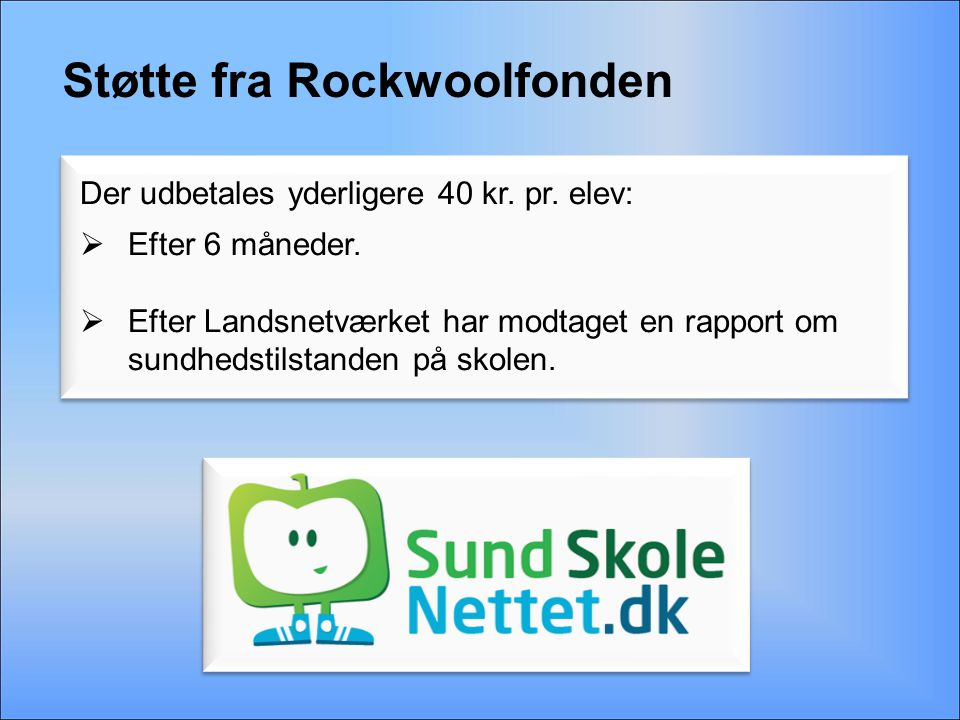 Støtte fra Rockwoolfonden