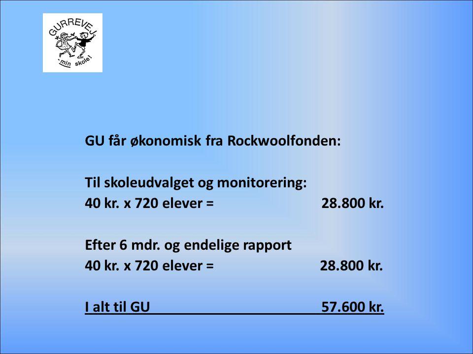 GU får økonomisk fra Rockwoolfonden: