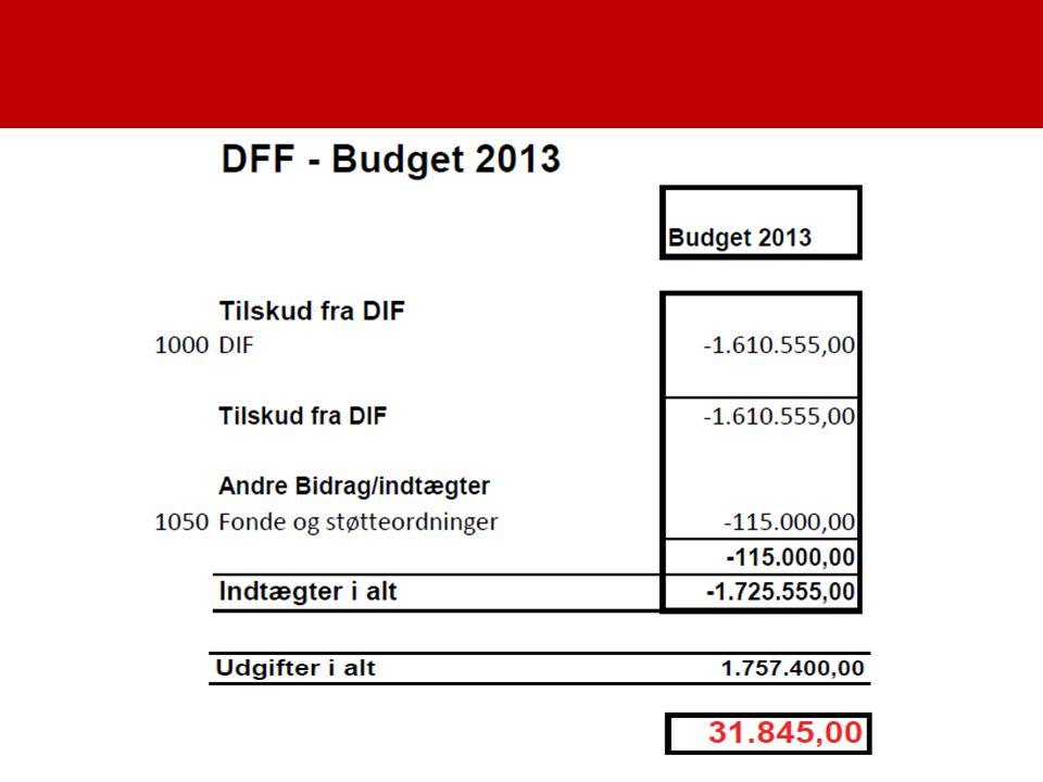 Økonomi budget 2013