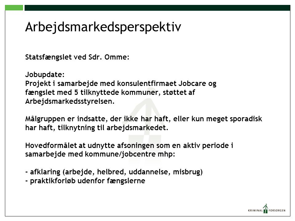 Arbejdsmarkedsperspektiv